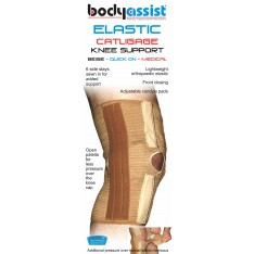Elastic Cartilage Support